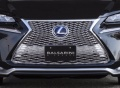 Lexus NX 2014- F-Sport Решетка радиатора G CORPORATION BALSARINI